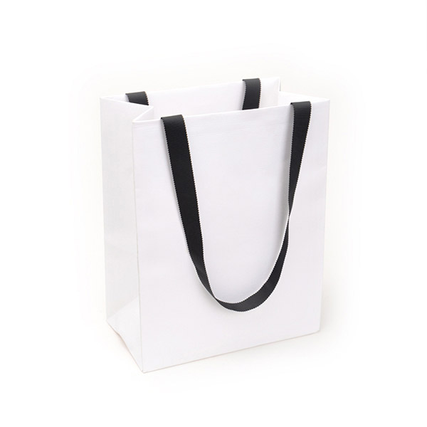 Paper Bags with Handles 5