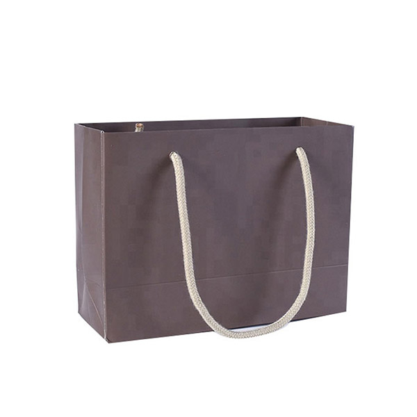 Paper Bags with Handles 6